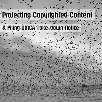 Protecting Copyrighted Content