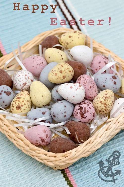 Easter speckled eggs chocolate eggs basket with eggs