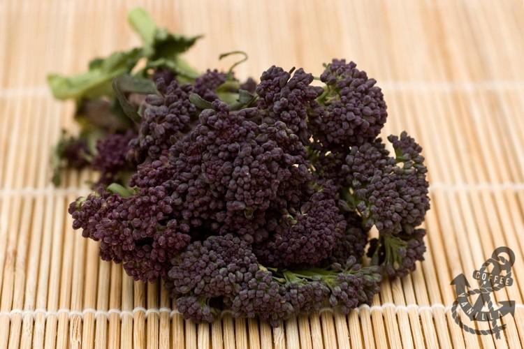 sprouting broccoli recipe