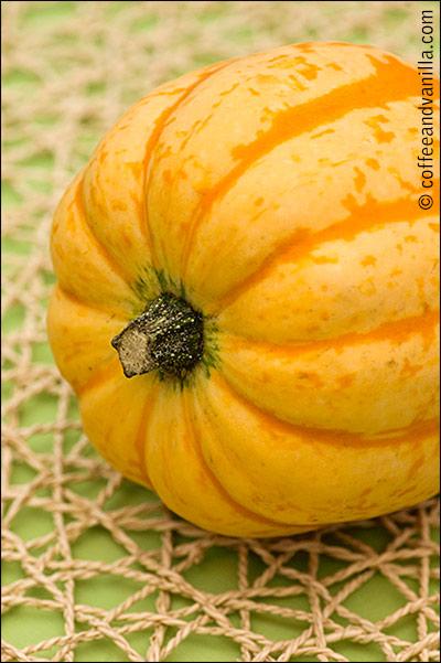 squash types and varieties