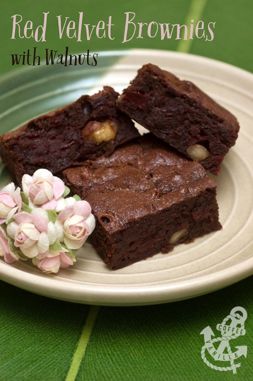 chocolate and pecan beetroot brownies recipe