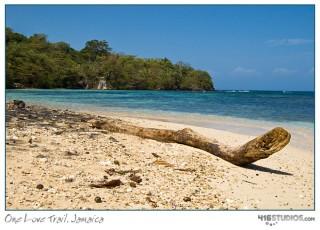 one-love-trail-jamaica-1