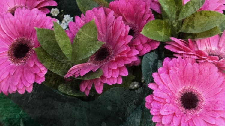Mother's Day – Mothering Sunday – Dzień Matki