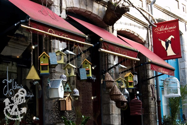 lille france shopping Alchimie florist plant store bird cages for sale