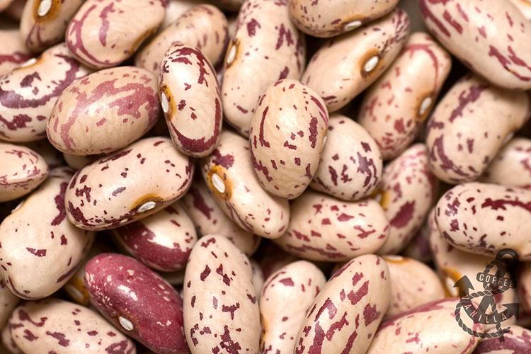 Crab eye beans, Rose-coco beans, Shell beans