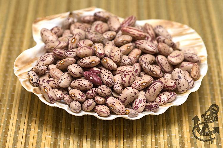 Cranberry beans, Borlotti beans, Saluggia beans, Roman beans