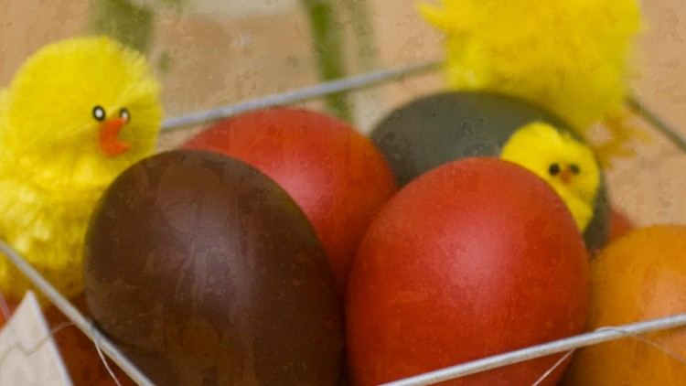Happy Easter & Spring! Plus Natural Egg Colourant Ideas.