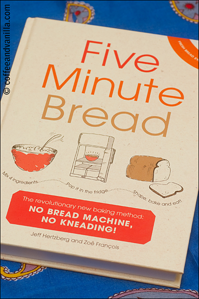 Five Minute Bread book review