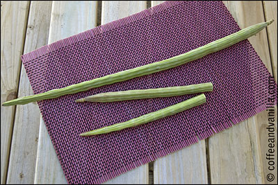 Indian long green vegetable similar to okra