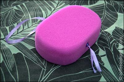 sponge on a ribbon