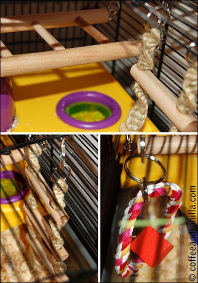 hamster toy hanging bridge ladder ring gnawing string