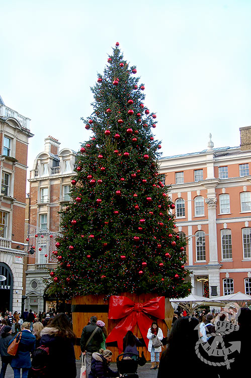 huge Christmas tree with red bow