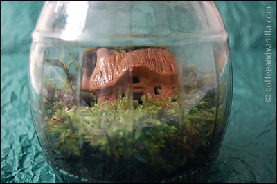 magical miniature garden