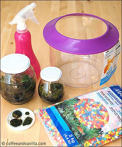 how to make miniature moss garden