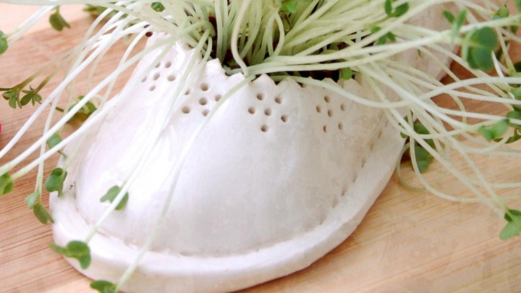 Cress –  Easter Table Decoration