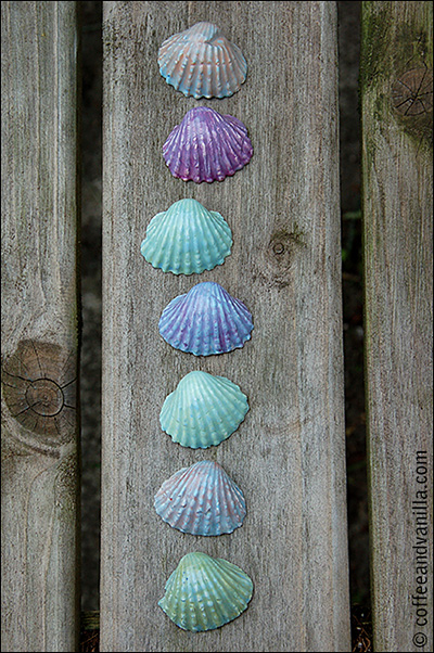 DIY clay shells