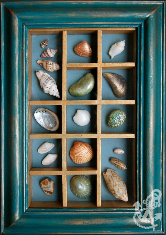 aged teal box frame with shells