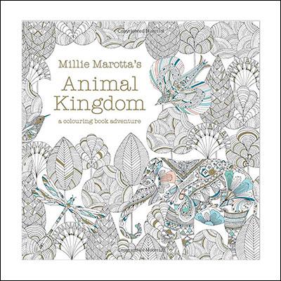detailed colouring book for bigger children