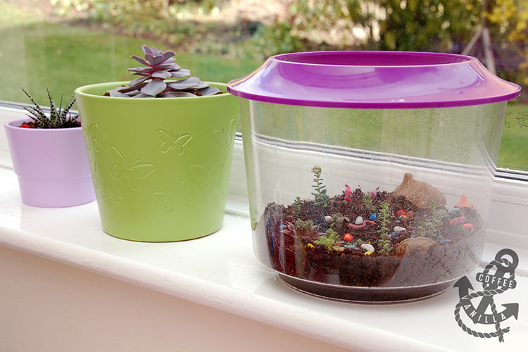 flower pots for kids