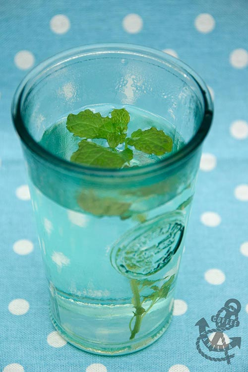 how to prepare mint tea from scratch without toxic teabags and honey