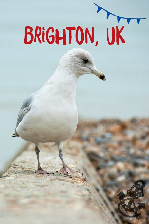 list of Brighton attractions family friendly cheap or free activities