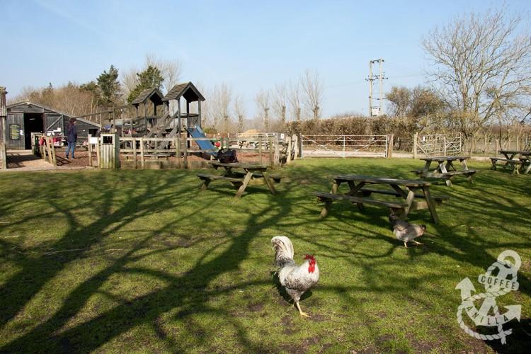 family friendly open farm near Brighton