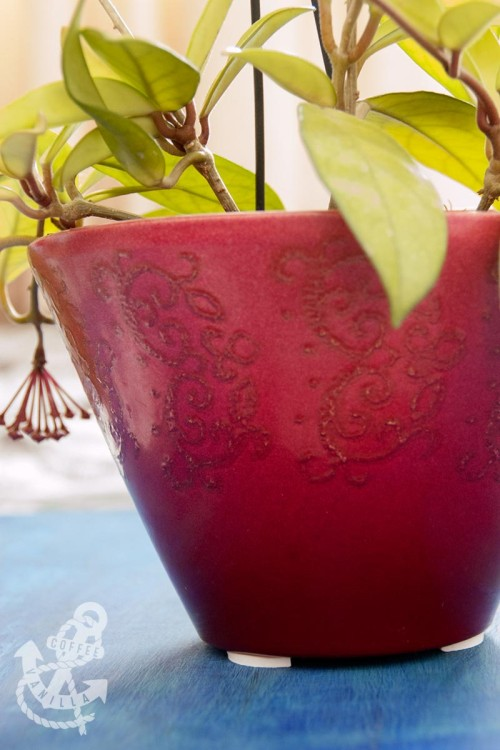 how to remove stains made by flower pots