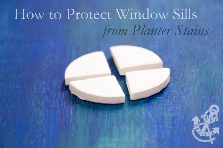 protecting windows from mould stains on window sills