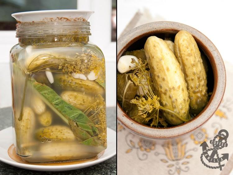 Polish crock dill pickles