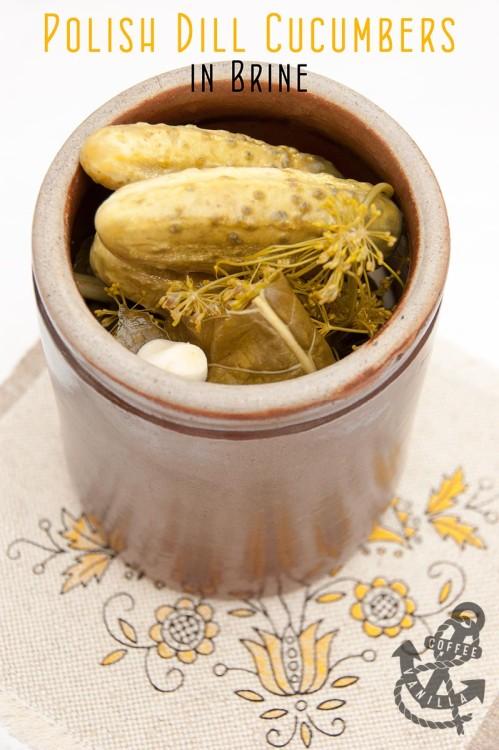 cucumbers in brine recipe