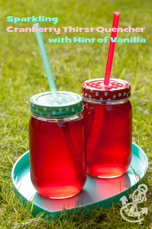 thirst quencher recipes thirst quenching ideas