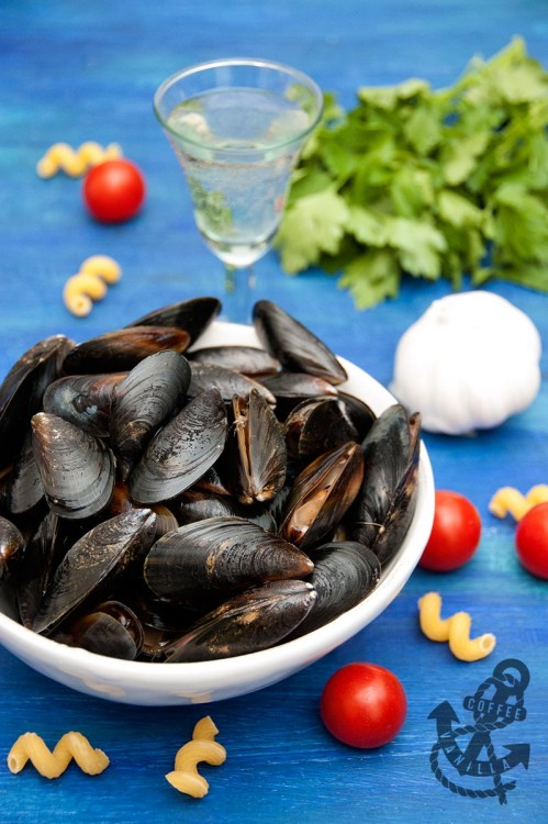 how to cook fresh mussels