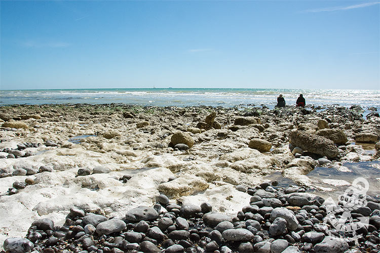 rock pools near Brighton