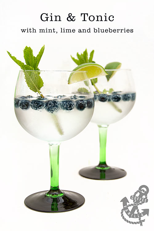 gin and tonic recipes