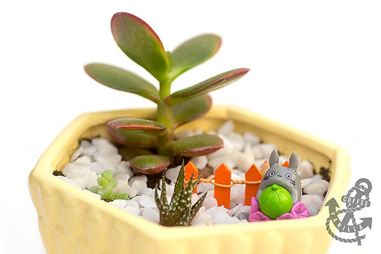miniature garden ideas for kids Totoro garden