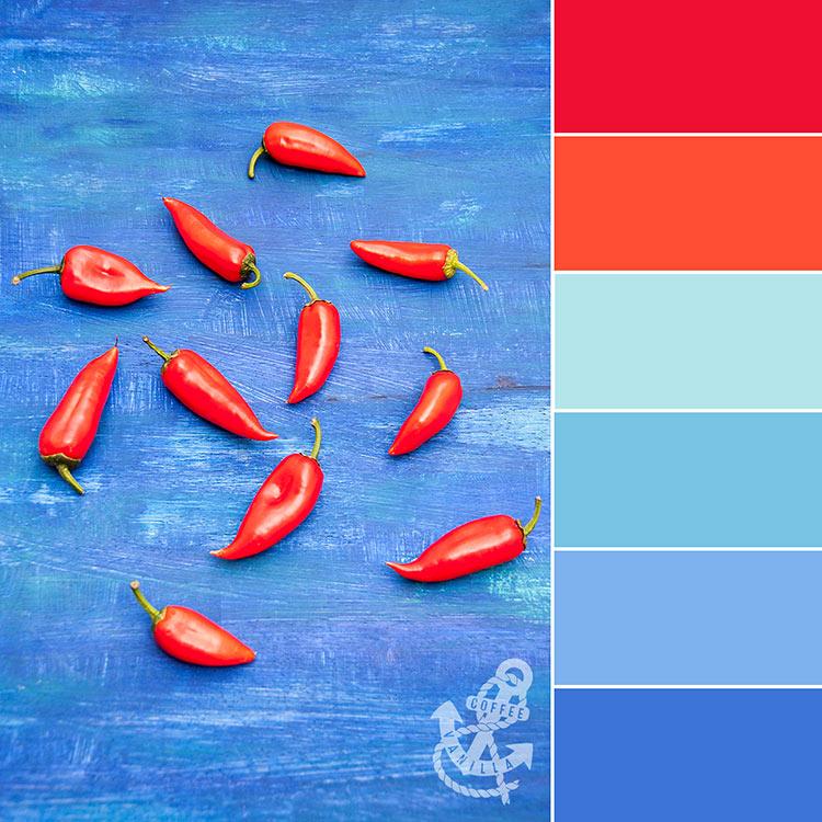 colour palettes for kitchen