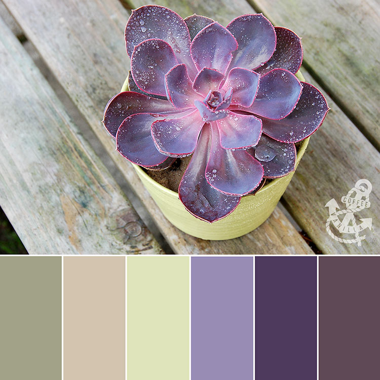 natural colour palette for living room and bedroom
