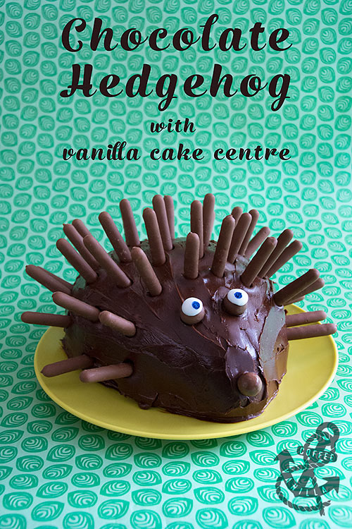 simple chocolate hedgehog cake for kids parties