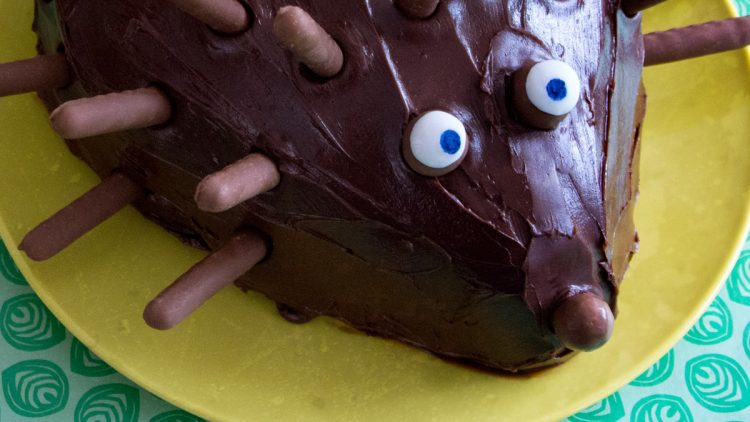 Chocolate Hedgehog with Vanilla Cake Centre – Baking with Kids