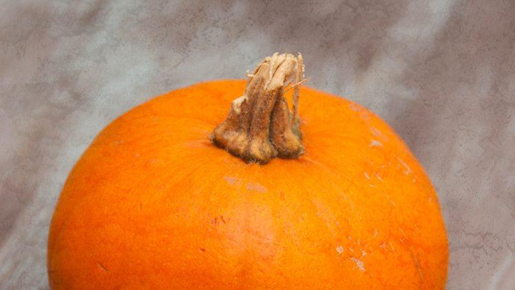 Indoor Halloween Activities for Kids Instead of Trick-or-Treating