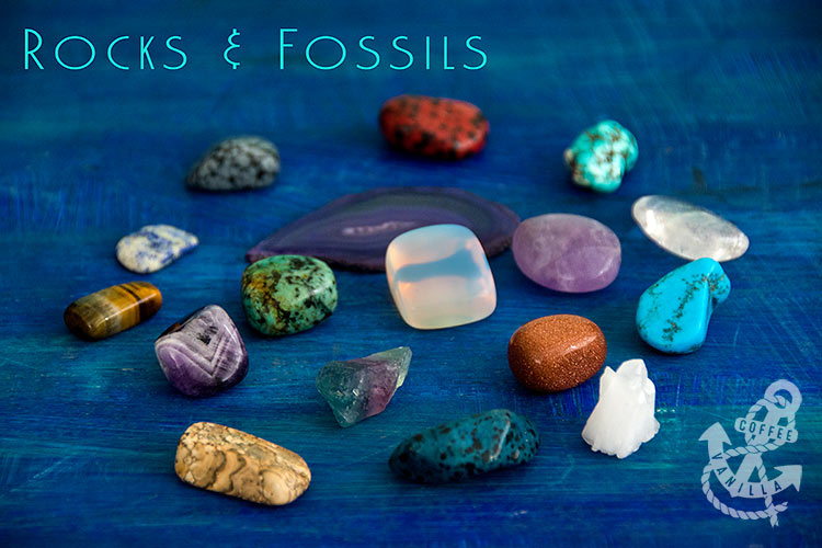 rocks fossils gemstones available in UK
